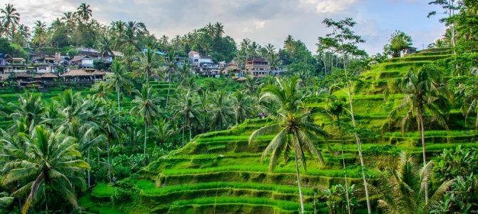 Budgettering for rejsen til Bali